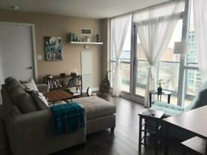 1 bdrm available in 2 bdrm downtown condo