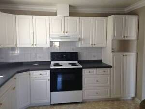 RENOVATED 5 Bedroom Home - South East Vancouver (Fraser &
