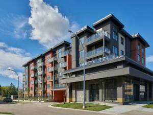 BRAND NEW LUXURY 1 BEDROOM NEAR GRENADIER PARK- MOVE IN TODAY!