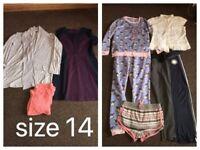 Size 14 bundle