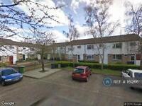 3 bedroom house in Ellindon, Peterborough, PE3 (3 bed)