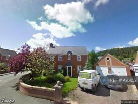4 bedroom house in Park Avenue, Kerry, Newtown, SY16 (4 bed)