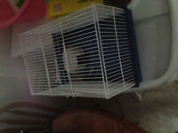 Great condition hamster cage with accessories