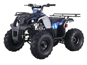 KIDS 125 CC ATVS WITH REVERSE 1-800-709-6249