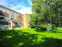 2BDRM Lakeview Apt, Perfect Location, Close to Parks/Downtown