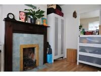Single room in friendly professional house