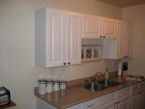 ***RENOVATED***BEST VALUE 1 BED DOWNTOWN APARTMENT