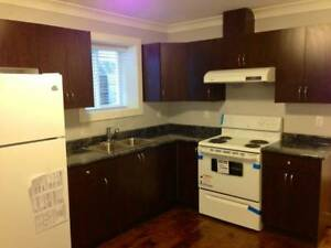 Like New Spacious 2 Bedroom Basement Suite avail. for rent Nov 1