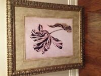 Reduced - Beautiful framed flower pictures
