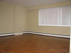 1 bedroom apartment for rent at Minton Apartments.