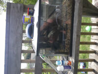 10g fish tank with everything you need + extras. $50