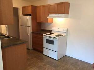Spacious Three Bedroom Available June 1st