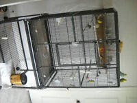 Bird Cage and Finches