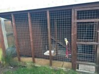 10 x 6 FT cattery, cat house, dog house