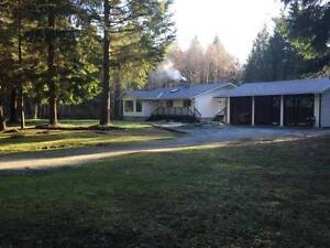 9.8 Acres With Fully Renovated 3 Bedroom House