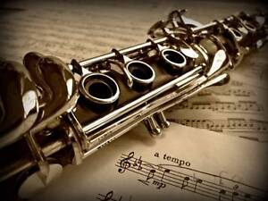 Brian Ee Clarinet Lessons Little Bay Eastern Suburbs Preview