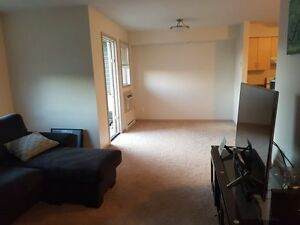 2 Bedroom Apartment - September Month Free!