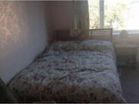 Sunny double room for rent in Peckham homely flat