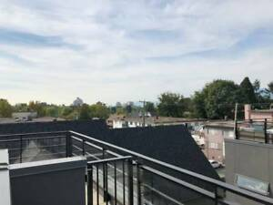 Modern and sleek 3 bed/2.5 bath TH in trendy SOMA w ROOFTOP deck