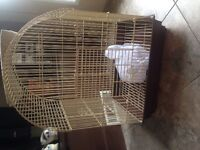 Medium sized bird cage with supplies and toys!!!