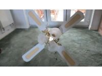 Large ceiling fan with triple lights
