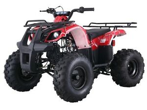 ATVS 125 WITH REVERSE 799.99 1-800-709-6249 St. John's Newfoundland image 15