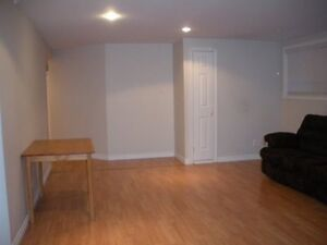 Large and spacious 1 bedroom apartment