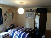 VERY NICE DOUBLE ROOM WITH LOTS OF STORAGE AND PRIVATE FRIDGE AT ROEHAMPTON