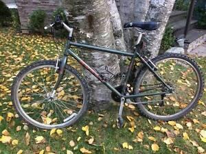 Norco Kokanee 21-speed cross country mountain bike