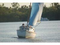 Yacht ~ Sadler Seawych Trailer Sailer / Sailing boat / for sale