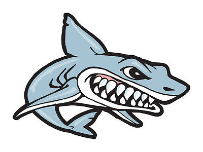 Shark Temporary Tattoo (12 tattoos) School Spirit Mascot Face -  MADE IN THE - Shark Tattoos