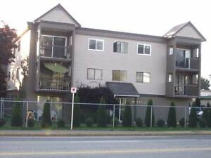 Large One Bedroom Available 01 October in Agassiz