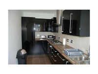 Excellent one bedroom flat in East Ham dss accepted with guarantor