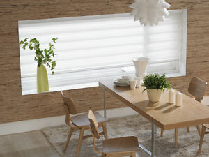 Professional window treatment-blinds and vertical