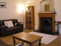 Edinburgh Holiday Accommodation - Large Festival Apartment sleeps 6, wifi, child cot, ground floor