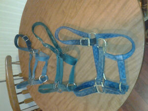 Tack for Sale - obo London Ontario image 3