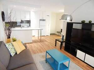 AMAZING 2-BEDROOM 2-WASHROOM CONDO-STYLE APARTMENT IN DOWNTOWN