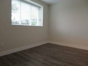 **** One year old 2 Bedroom Basement Suite for RENT ****