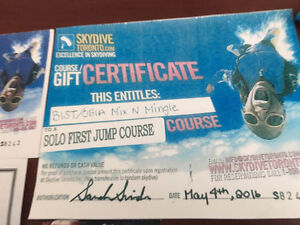 Solo First Jump Course - Skydive Toronto Kitchener / Waterloo Kitchener Area image 1
