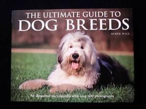 Ultimate Guide to Dog Breeds - Derek Hall Loganholme Logan Area Preview