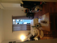 $660 Cute Studio Downtown- Available for Summer! (3454 Rue Aylme