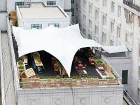 Bar staff - Summer rooftop vibes!