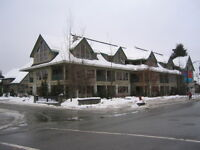For sale or trade 2 bedroom timeshare in Whistler
