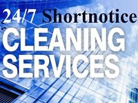 Professional Domestic Cleaning Services Reliable and Honest Services