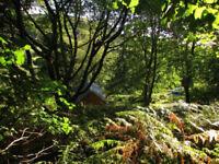 Land plot Glenelg Highlands