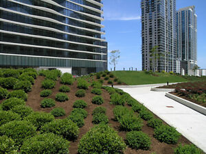 Commercial Property Lawn Care Maintenance Landscaping Management