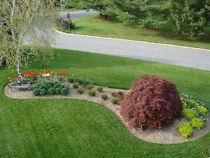Quality Lawn Cutting and Garden Care Services Kitchener / Waterloo Kitchener Area image 2
