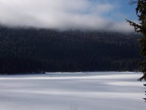 One & Two Bedroom Cabins for Rent Near Sun Peaks