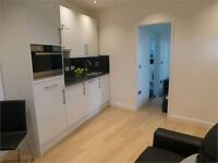 Beautiful 1 Bedroom Flat minutes away from Northfields station