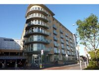 1 Double bedroom in a new build flat Feltham